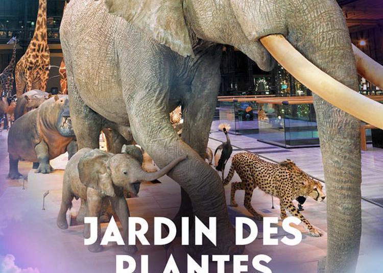 Grande Galerie De L'Évolution à Paris 5ème