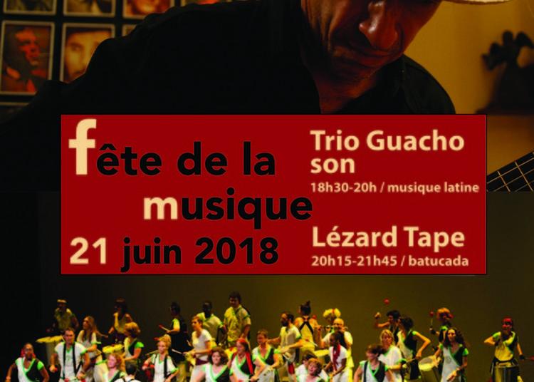 Guacho Son Et Lézard Tape / L'amérique Latine Au Crédit Municipal De Paris à Paris 4ème