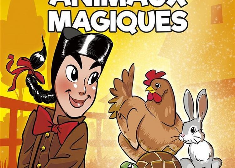 Guignol Et Les Animaux Magiques à Saint Etienne