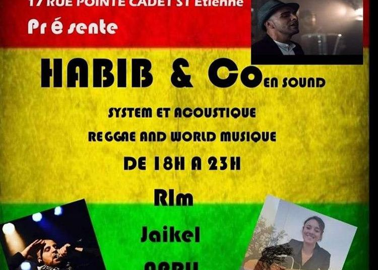 Habib&co Sound System - 21juin à Saint Etienne