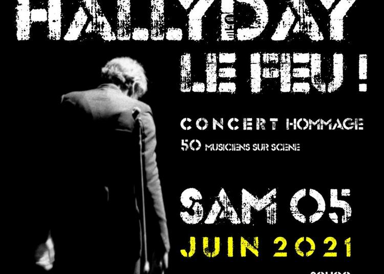 Hallyday Le Feu ! Concert Hommage à Orchies