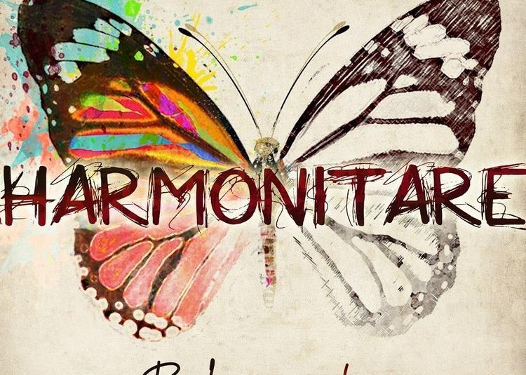 Harmonitare :  Slam, chansons parlées à Marennes