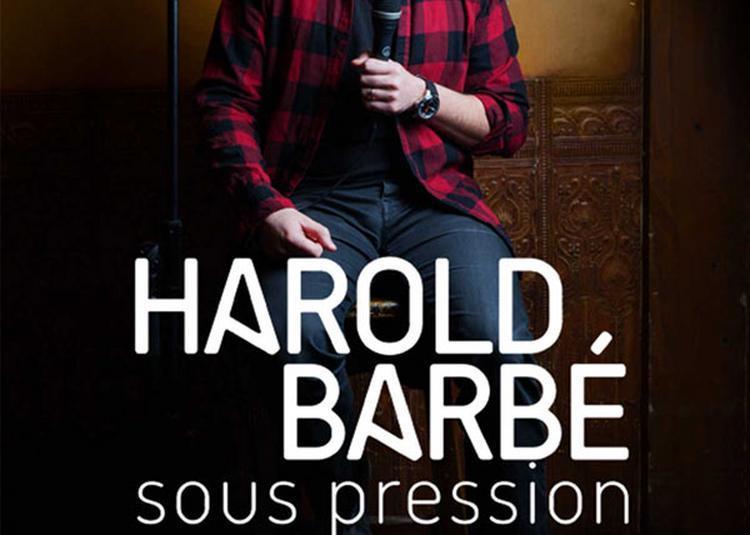 Harold Barbe à Cournon d'Auvergne