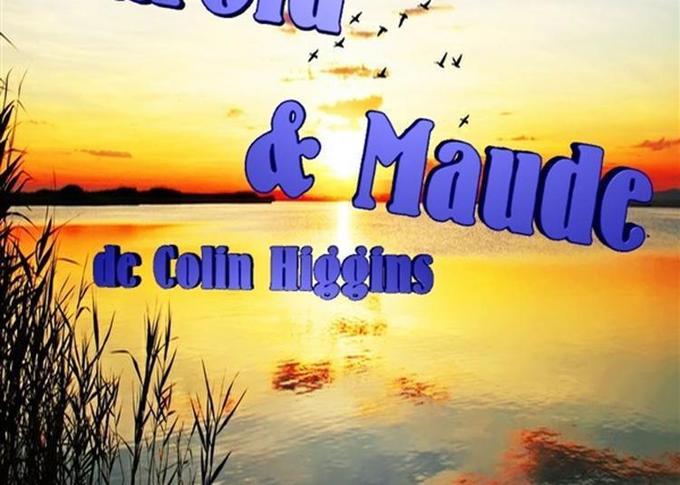 Harold & Maude à Nice