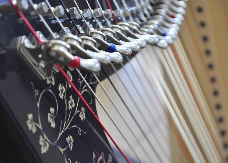 Harpes d'Exil 2018 : La voix des cordes à Caen