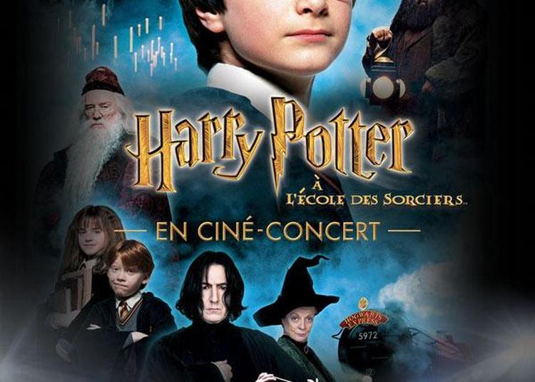 Harry Potter À L'école Des Sorciers à Floirac