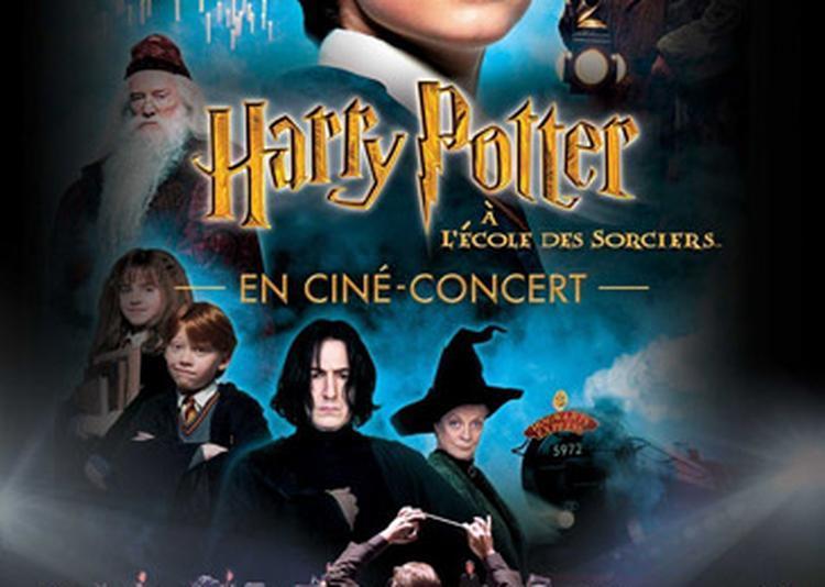 Harry Potter À L'école Des Sorciers En Ciné-concert à Toulouse