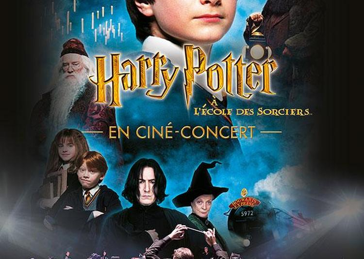 Harry Potter À L'école Des Sorciers(tm) En Ciné-concert à Lyon