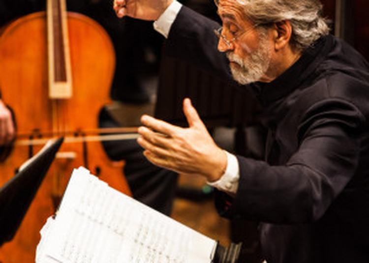 Haydn / La Création / Le Concert Des Nations à Paris 19ème