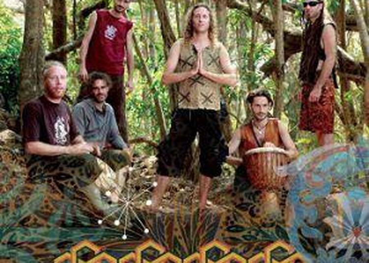 Hilight Tribe à Rennes