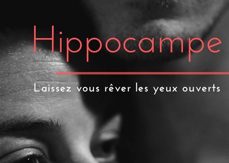 Hippocampe à Lyon