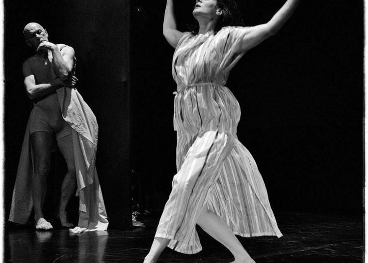 Histoire D'eux La Danse Par La Compagnie V.o. Création Chorégraphique D'olivier Viaud à Paris 15ème