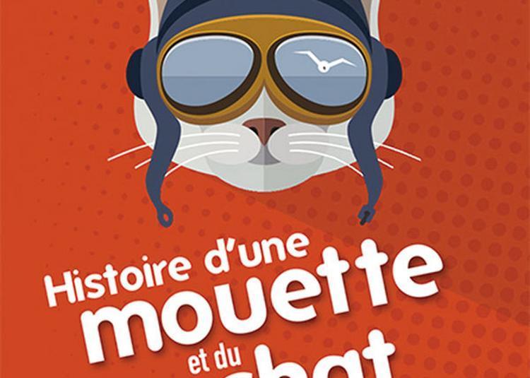 Histoire D'Une Mouette Et Du Chat à Paris 4ème