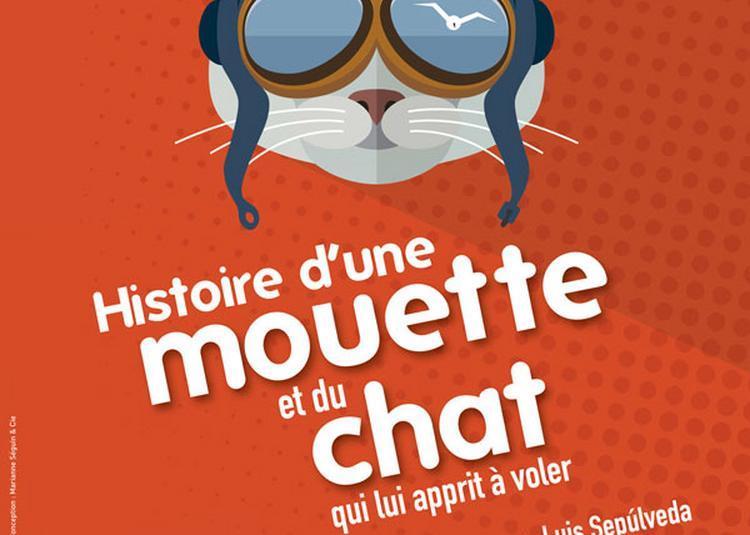 Histoire De La Mouette Et Du Chat à Paris 16ème
