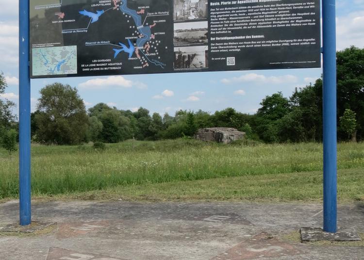 Hoste, Porte D'entrée De La Ligne Maginot Aquatique