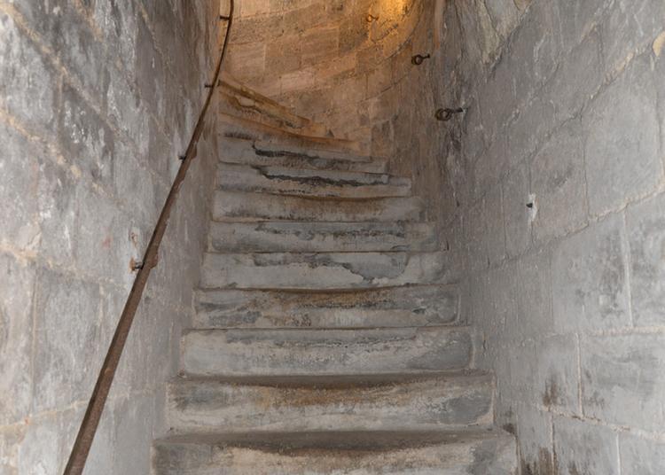 Hôtel De Ville : Visite De La Cave Au Clocher En Nocturne à Chalons en Champagne