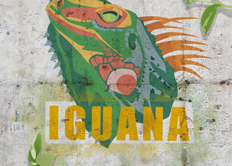 Iguana + La Pince Monseigneur à Paris 11ème
