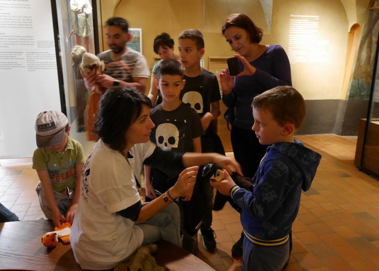 Ils Sont Là Pour Vous Dans Le Musée Des Arts De La Marionnette ! à Lyon