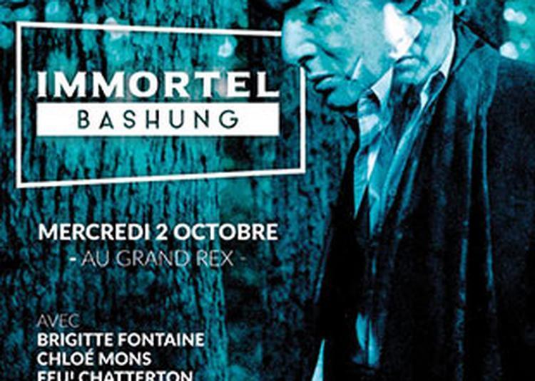 Immortel Bashung à Paris 2ème