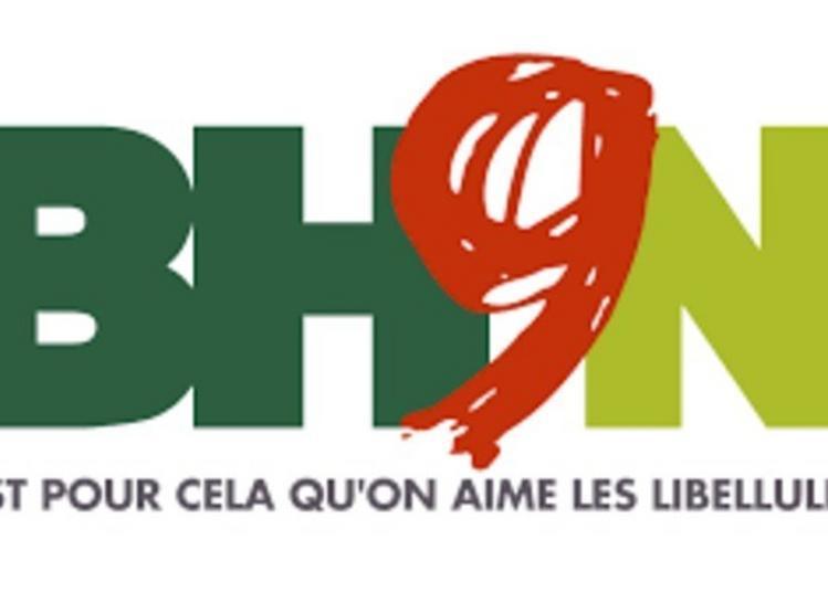Inauguration De La 9ème Edition De La Biennale Hors Norme à Lyon