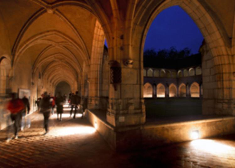 Inauguration Du Nouvel Accrochage Du Musée Et Visite Libre Du Monument à Bourg en Bresse