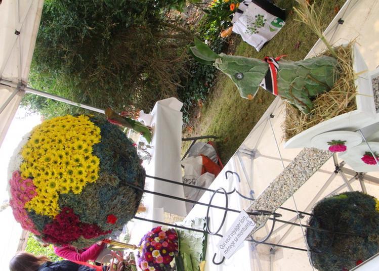 Initiation à L'art Floral à Draveil