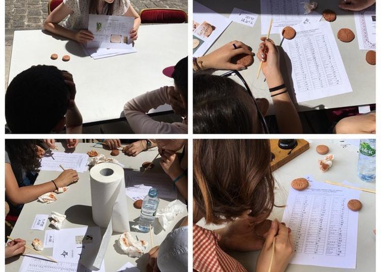 Initiation À L'écriture Cunéiforme à Nanterre