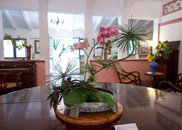 Initiation Et Exposition D'ikebana à Le Francois