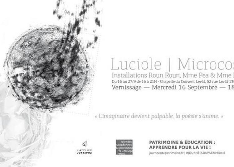 Installations Artistiques - Luciole / Microscosm' à Marseille
