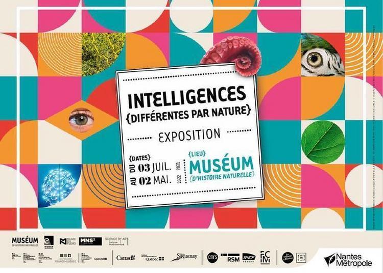 Intelligences, Différentes Par Nature à Nantes