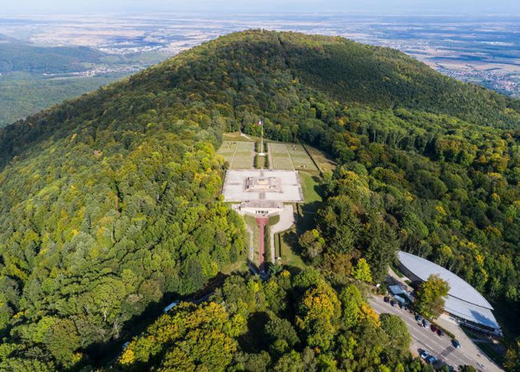 Itinérance Historique Au Hartmannswillerkopf Avec Les Acteurs Du Site Mémoriel à Wattwiller