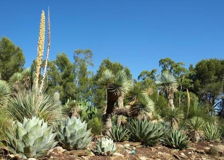 Jardin Zoologique Tropical à La Londe les Maures