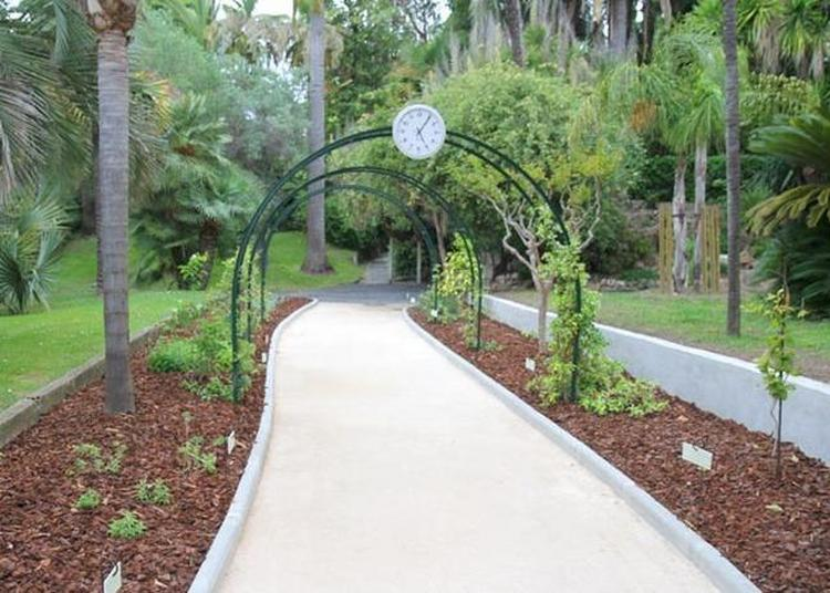 Jardins Villa Rothschild /  Médiatheque Noailles à Cannes