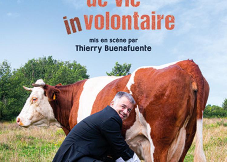Jean-Michel Rallet - Changement de vie (in)volontaire à Rennes