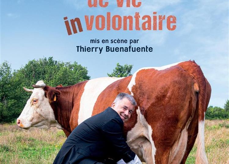 Jean-Michel Rallet Dans Changement De Vie (In)volontaire à Vichy
