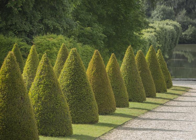 Jeu De Piste Dans Les Jardins à La Motte Tilly