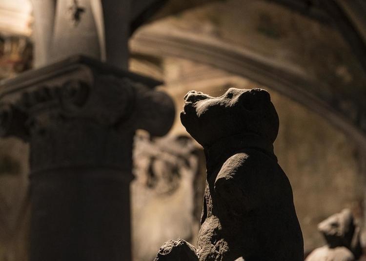 Jeu De Piste - Un Bestiaire à Ciel Ouvert à Strasbourg