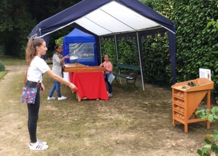 Jeux En Bois Dont Certains Sont Inscrits à L'inventaire Du Patrimoine Culturel - Château De Lesquiffiou à Pleyber Christ