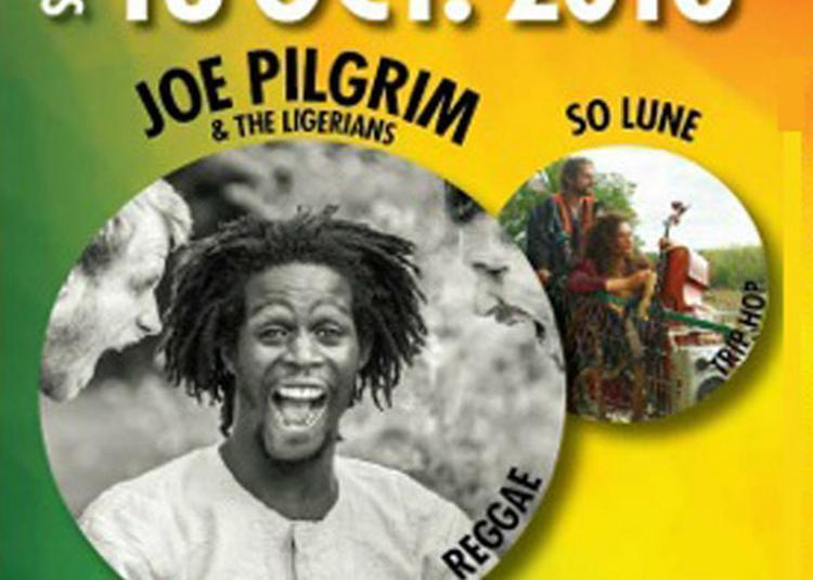 Joe Pilgrim & The Ligerians à Dolus d'Oleron