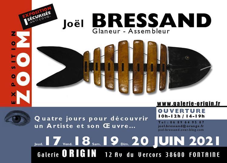 Zoom Sur  Joël Bressand à Fontaine
