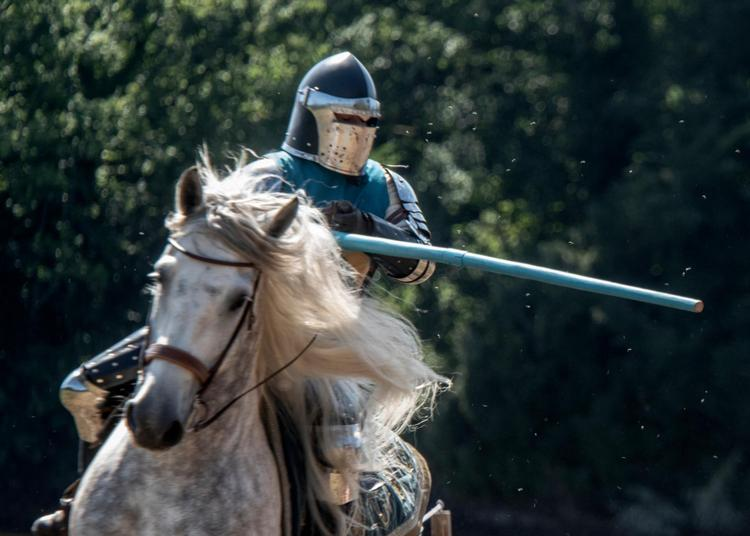 Journée chevalerie : Atelier de combat médiéval à Concoret