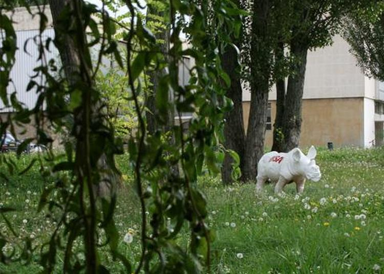 Journée mondiale du rhino INSA Lyon à Villeurbanne