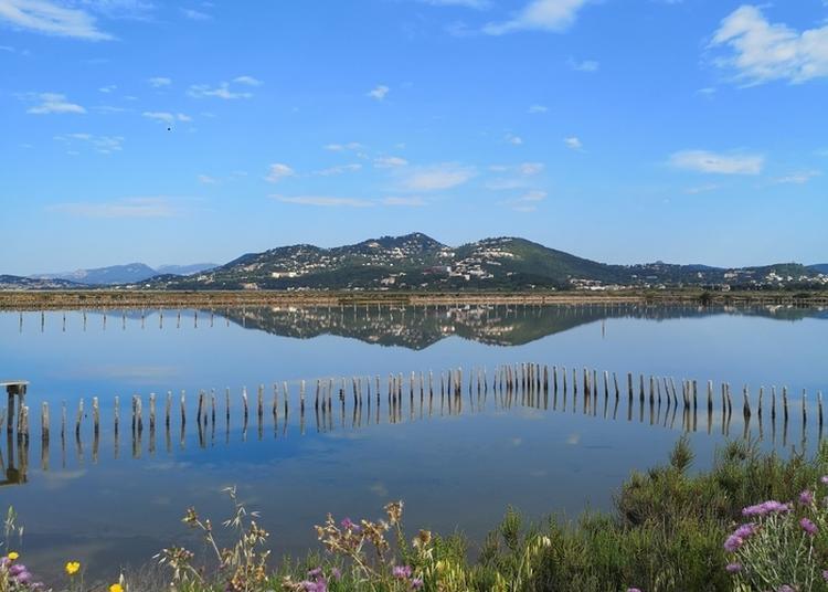 Journées Européennes Du Patrimoine Aux Salins D'hyères à Hyeres