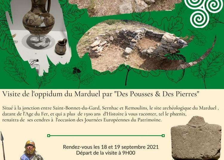 Journées Européennes du Patrimoine : Visite de l'oppidum du Marduel par