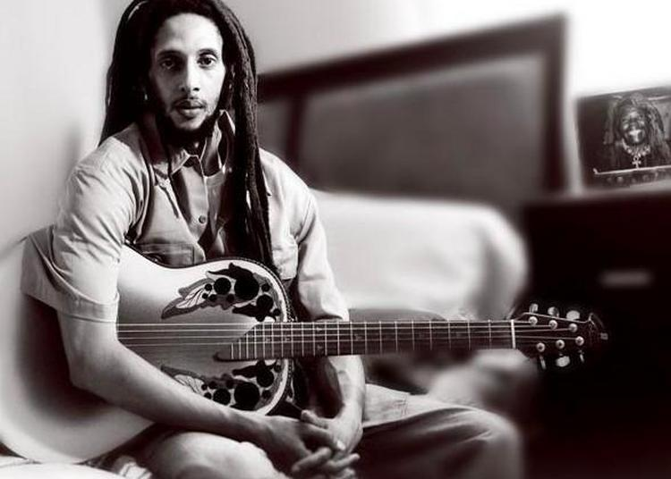 Village Rasta (jour 3) : Julian Marley, Lyricson, Blb Sound System à Paris 19ème