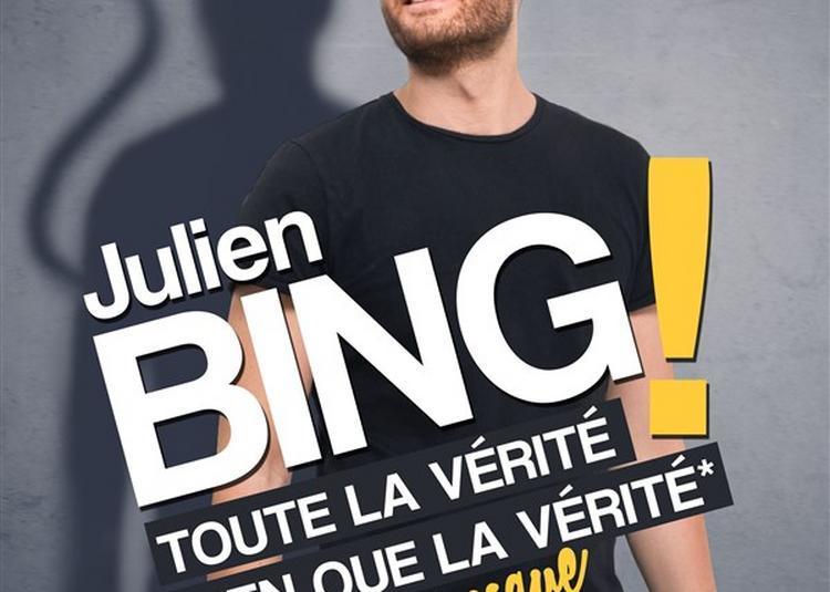 Julien Bing Dans Toute La Vérité, Rien Que La Vérité Ou Presque à Albert