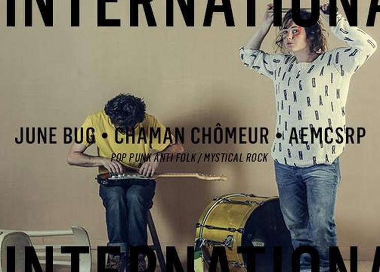 June Bug - Chaman Chômeur - aemcsrp à Paris 11ème