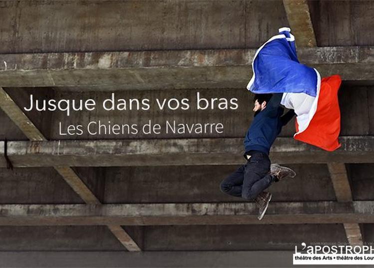 Jusque dans vos bras - Les chiens de Navarre à Pontoise