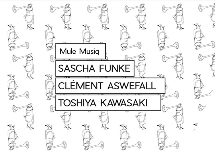 Kawasaki'S Mule Musiq = Sascha Funke + Clement Aswefall à Paris 11ème