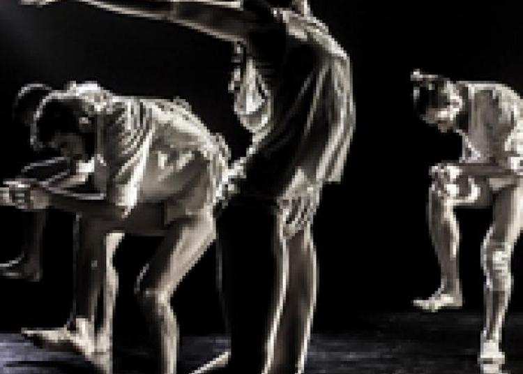 Kibbutz Dance Company à Biarritz